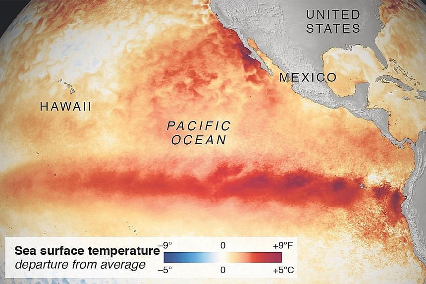 "The interplay of different kinds of warming going on in the Pacific, including El Nino and another zone of warm water dubbed ""the Blob"", can be difficult to sort out, so attributing a weather event to a single cause is unrealistic, say experts. The s"