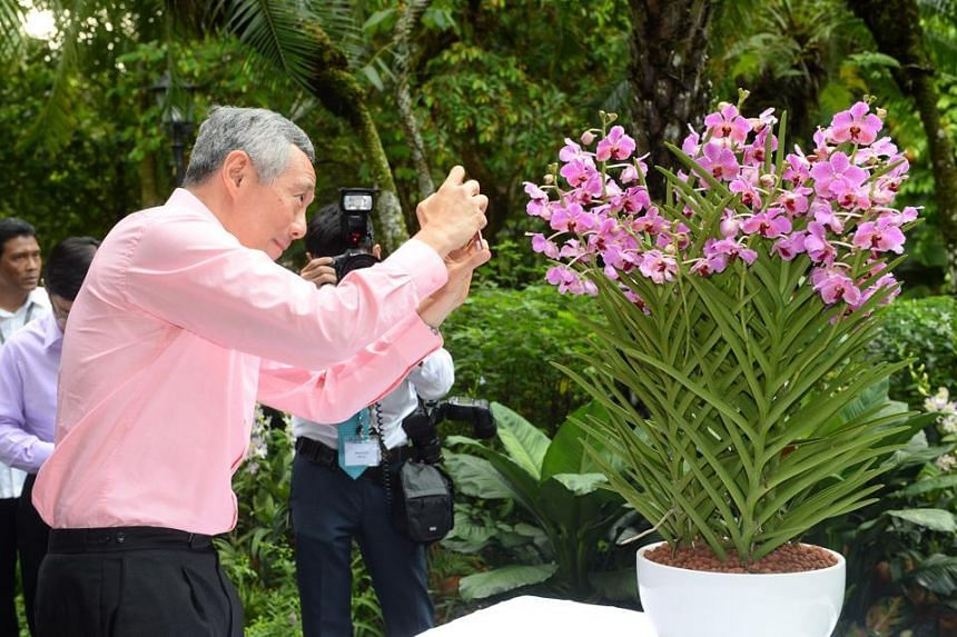 Prime Minister Lee Hsien Loong taking a picture off the Papilionanda Xi Jinping-Peng Liyuan.