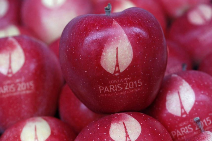 Apples bearing the World Climate Change Conference logo. For leaders at the talks, domestic constraints could make it hard for their efforts to bear fruit.