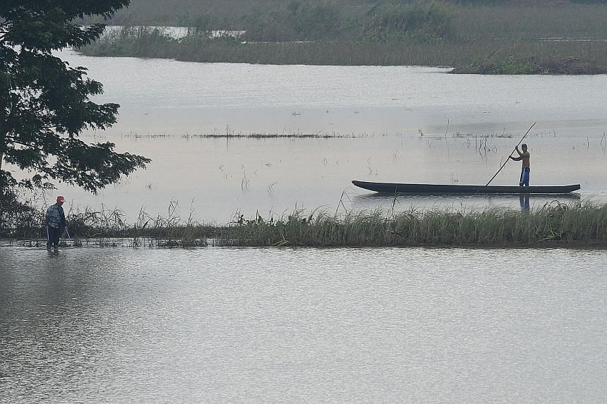 A flooded rice field in Candaba town, Pampanga province, north of Manila. Countries like the Philippines and Indonesia have already resorted to rice imports to bring down soaring prices at home.
