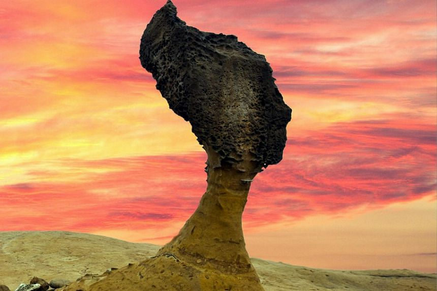 The imposing Queen's Head sandstone formation in Yehliu Geopark in Taiwan. Its neck may soon become too thin from thousands of years of erosion to support the head.