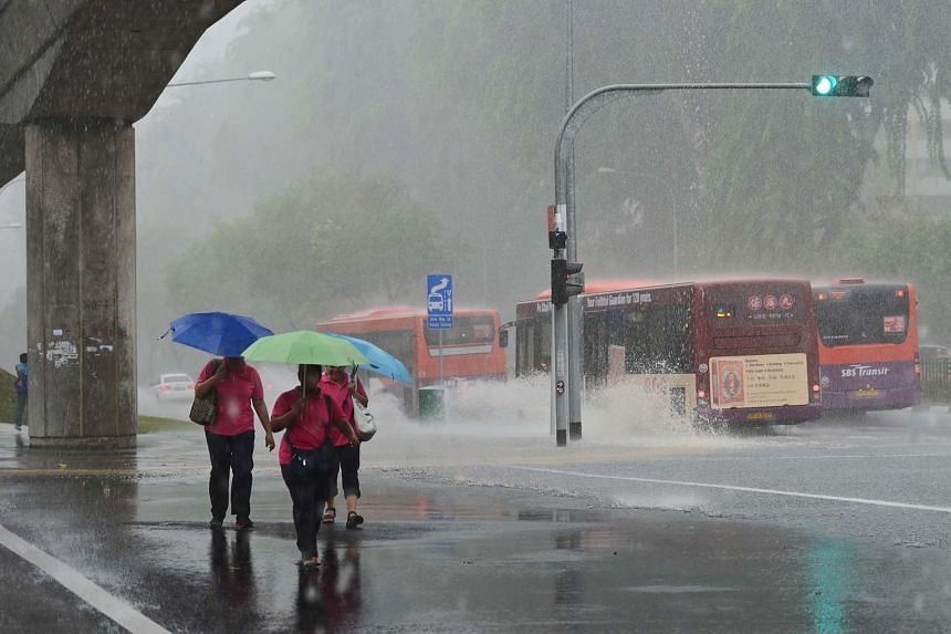 More rainfall can be expected compared to the first half of November.