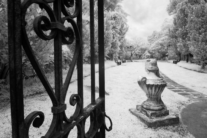 The ornate details of an iron gate is seen as it opens to Bidadari Garden, a memorial garden preserving the tombstones of prominent pioneers.