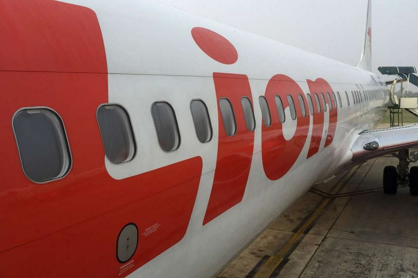 Indonesia's Lion Air grounded a pilot for offering a flight attendant to passengers as compensation for a flight delay.