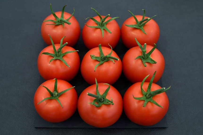 One woman in the study repeatedly experienced a spike in blood sugar after eating tomatoes, which are generally considered nutritious.