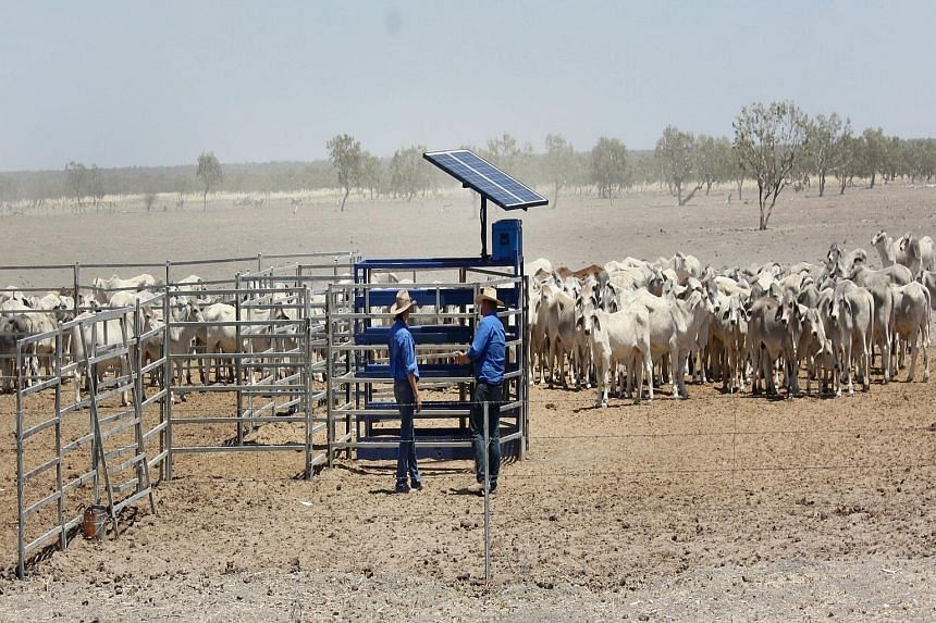 There have been concerns about the sales of vast tracts of Australian farmland to foreign investors in recent years, particularly firms from China.
