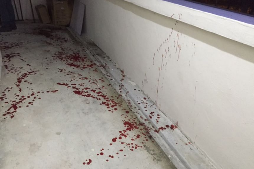 Blood spatters seen along a common corridor.