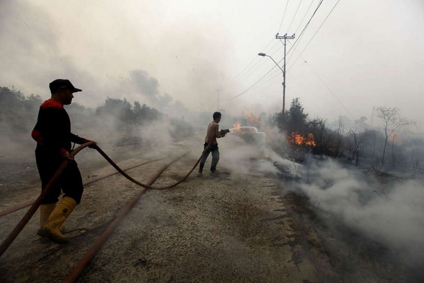 A file picture taken on October 28, 2015 shows Indonesian firefighters putting out a fire in Banyuasin, South Sumatra. PHOTO: AFP