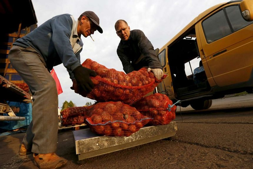 Employees of a local farm weigh sacks of potatoes at a street market in Russia.