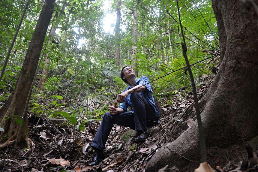 Nature Society president Shawn Lum at Bukit Timah Nature Reserve.