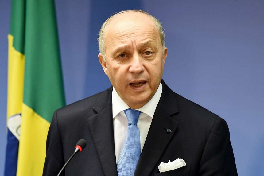 French Foreign Minister Laurent Fabius said Syrian troops could fight against ISIS after a regime change.