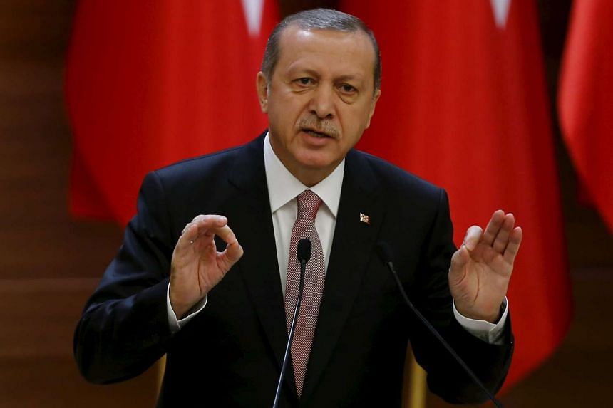 Erdogan (above) lashed out at Russian charges after the downing of a warplane on the Syrian border.