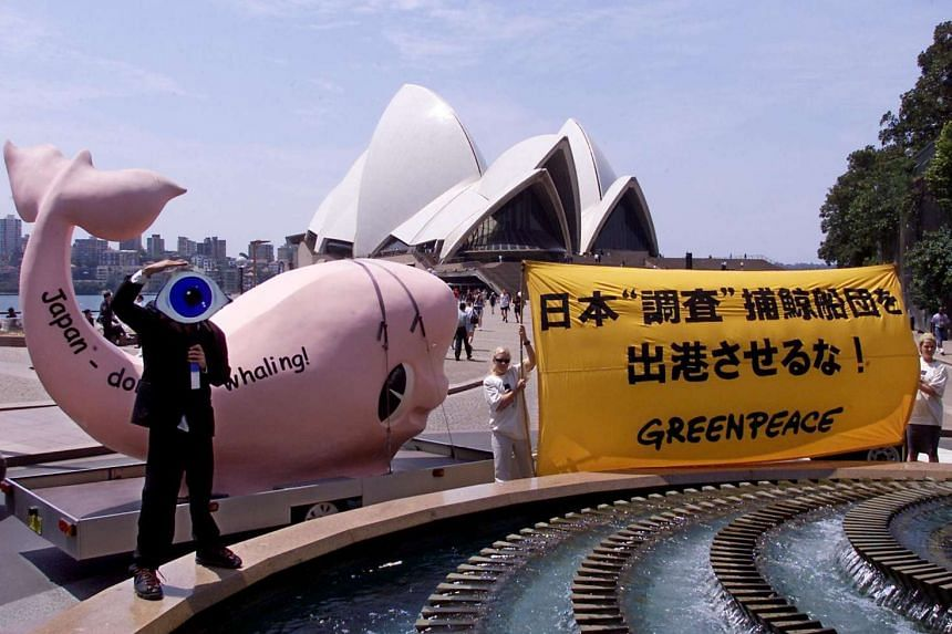 Greenpeace activists protesting against Japanese whaling front of the Sydney Opera House in 2001.