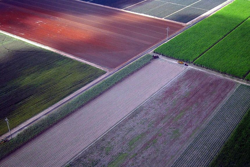 Farmland near the town of Bundaberg in Queensland. Mr Malcolm Turnbull wants a review of foreign investment rules to consider whether they should apply to state as well as federal deals. He downplayed concerns that the move was aimed at limiting Chin