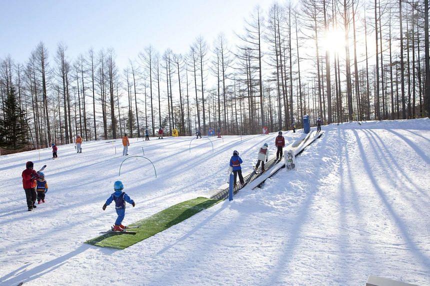 Ski resorts in Hokkaido, Japan.