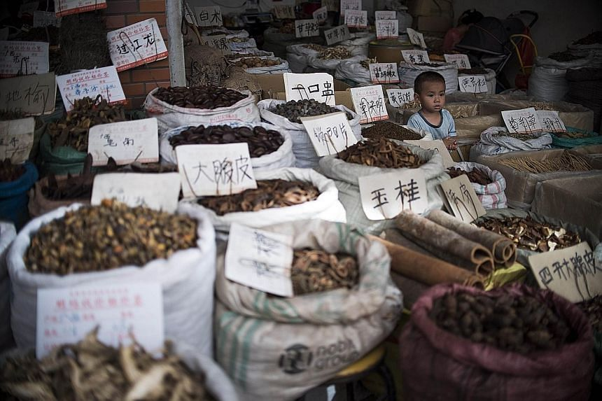 Ms Tu Youyou is getting China's first Nobel Prize in medicine next week for extracting an anti-malarial drug from a herb cited in a TCM text. Herbs and ingredients used in traditional Chinese medicine for sale at a market in Yulin in southern China's