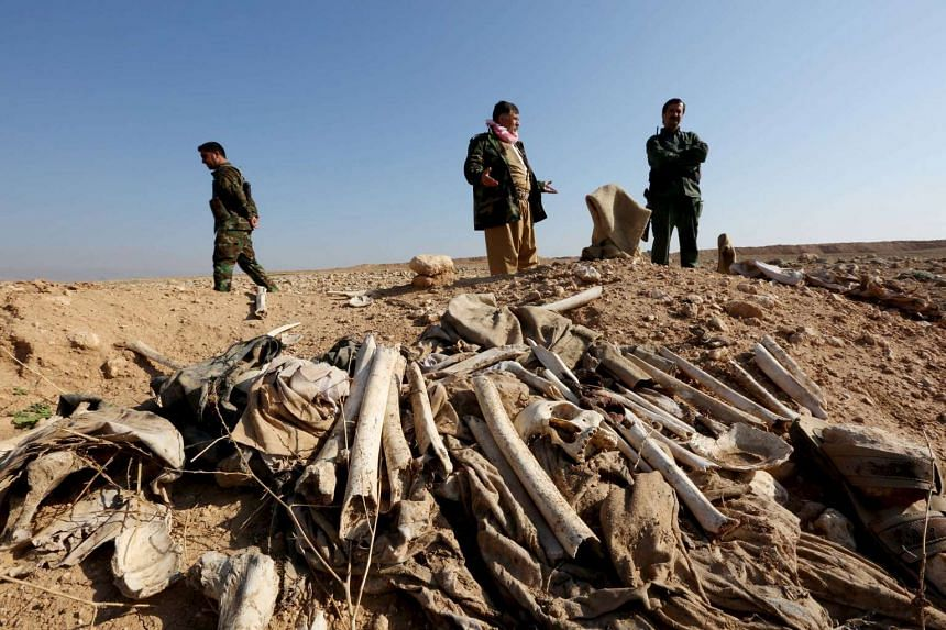 Bones in a mass grave on the outskirts of the town of Sinjar on Nov 30, 2015.