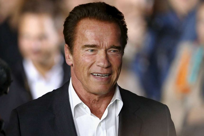 Arnold Schwarzenegger (above) laid a floral wreath at the Bataclan concert venue where 90 people were killed.