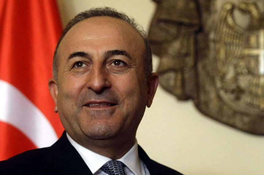"""Turkish Foreign Minister Mevlut Cavusoglu on Dec 6 blasted as a """"provocation"""" images of a Russian serviceman brandishing a rocket launcher as his warship passed through Turkish waters."""