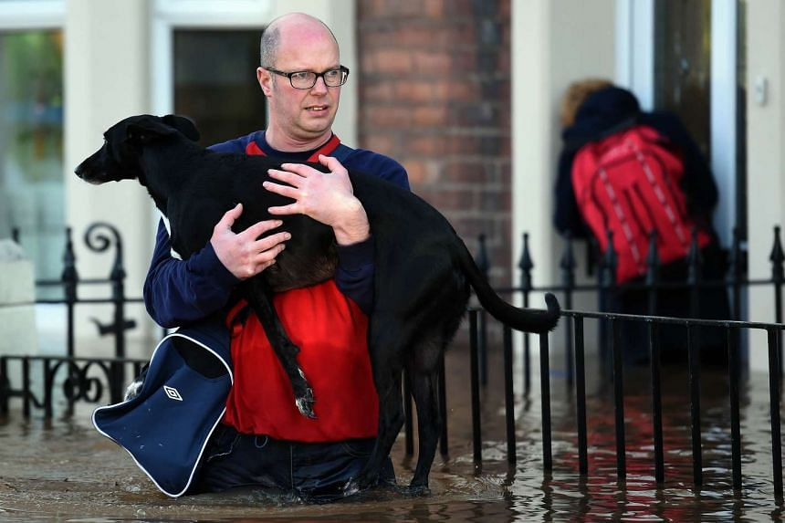 A resident carrying a dog along a flooded street in Carlisle, northern England on Dec 6, 2015.