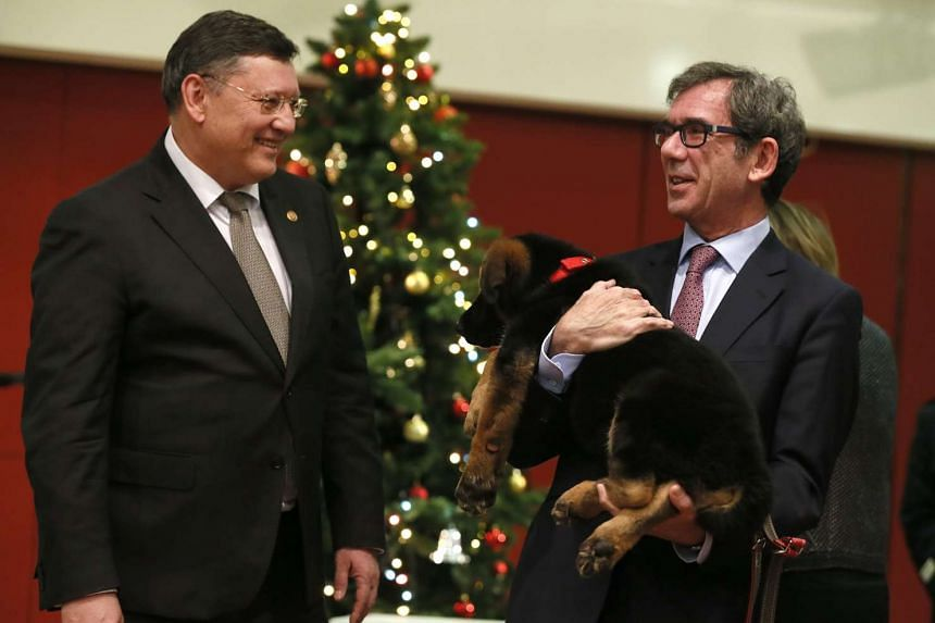 French Ambassador to Russia Jean-Maurice Ripert (right) holds a German shepherd puppy dog named Dobrynya during a presentation ceremony at the French embassy in Moscow, Russia, on Dec 7, 2015.