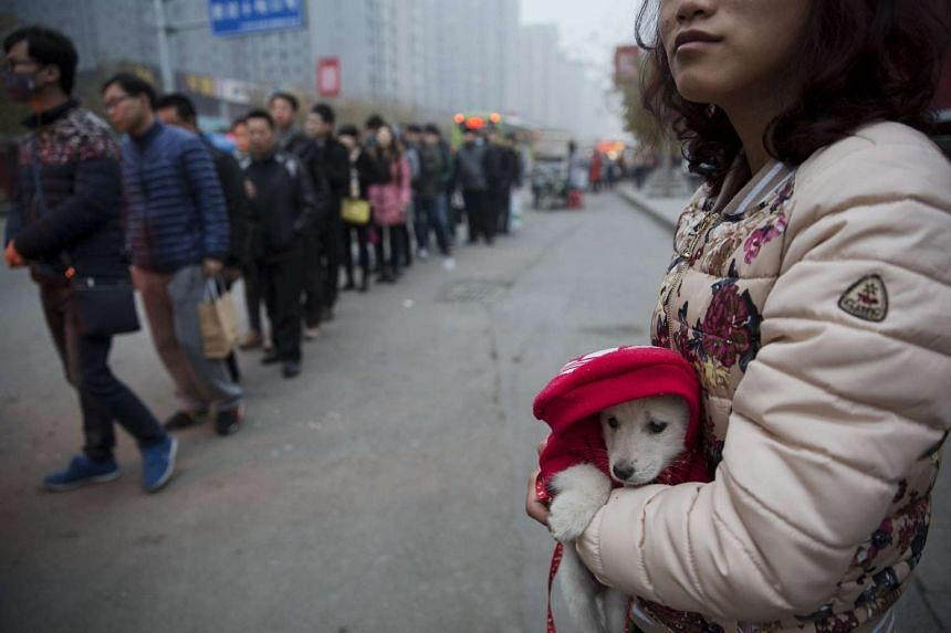 A woman holds a dog in Yanjiao, Hebei province, China.