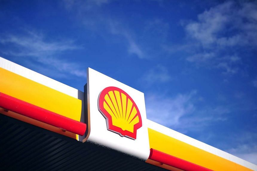 Royal Dutch Shell is reviewing investments in gas fields to pipelines in New Zealand.