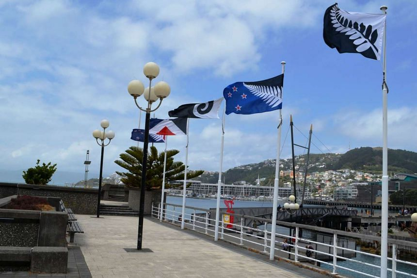 New Zealanders have chosen a silver fern on a black-and-blue background as their preferred option.