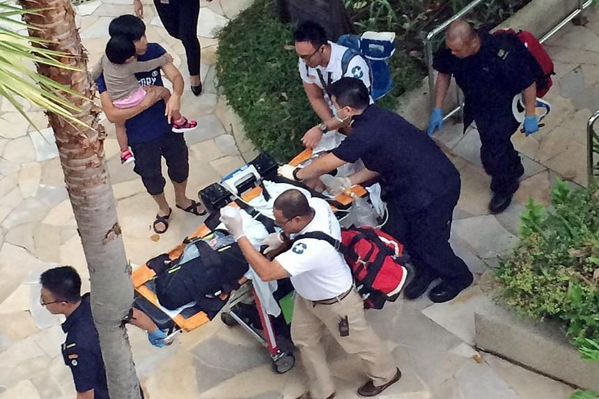 Muhammad Syafizul Danyal Muhammad Shaffie had ventured into a deep section of the pool at Resorts World Sentosa's Hard Rock Hotel. That area of the pool was also a blind spot to lifeguards on duty.
