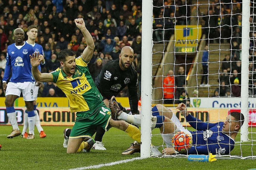 Wes Hoolahan (left) poking his close-range equaliser over the line in Norwich City's 1-1 home draw with Everton.