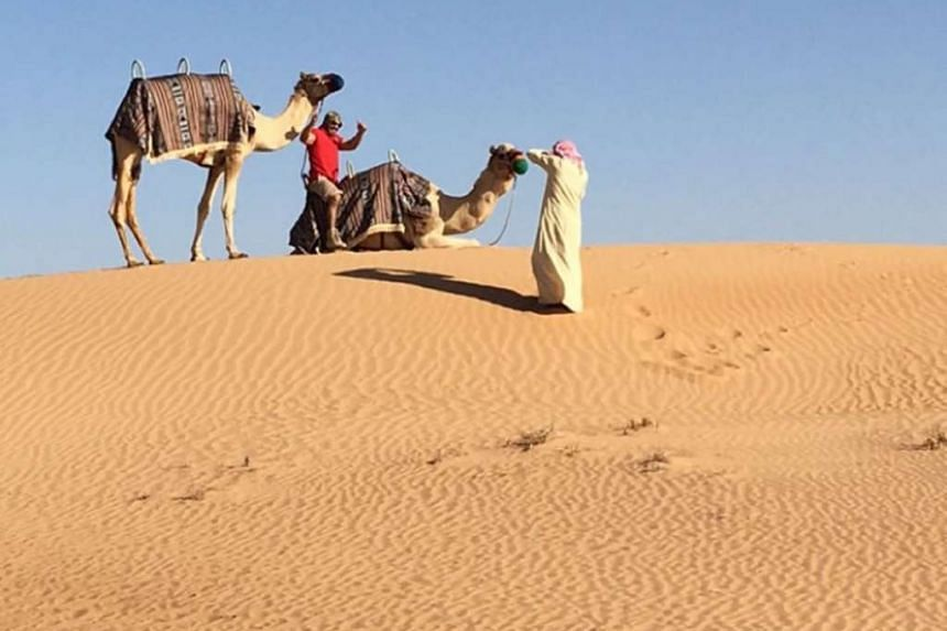 The camels arrive for the happy couple