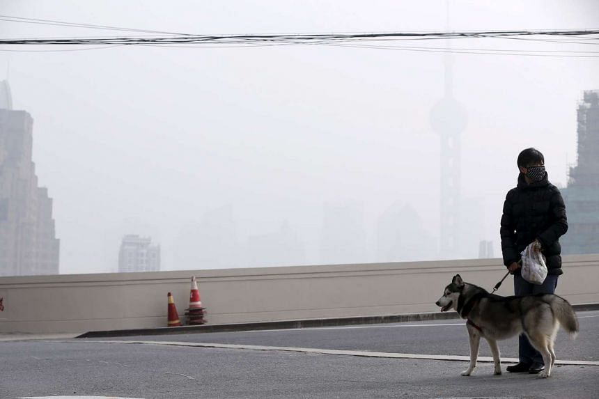 A woman wearing a face mask with her dog amid heavy smog in front of the financial district of Pudong, Shanghai.