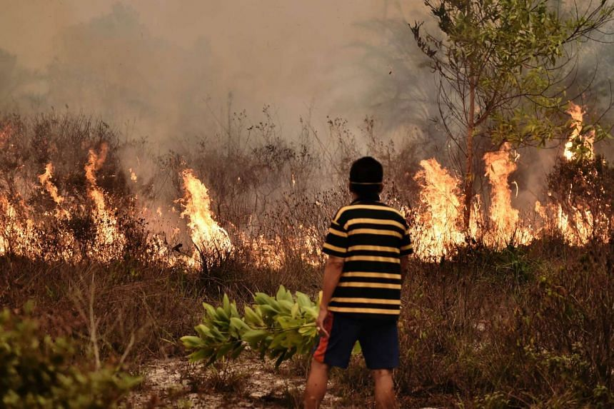 A villager looks at a peatland fire on the outskirts of Palangkaraya city, Central Kalimantan, Oct 26, 2015.