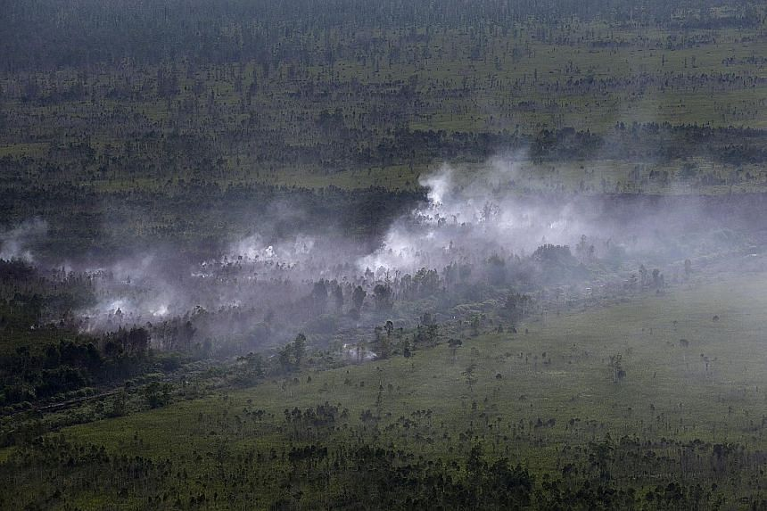 An aerial photograph taken early this month showing land in Central Kalimantan destroyed by forest fires.
