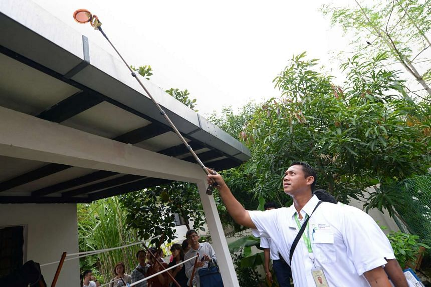 An NEA officer checking the roof of a house in Da Silva Lane for mosquito breeding.