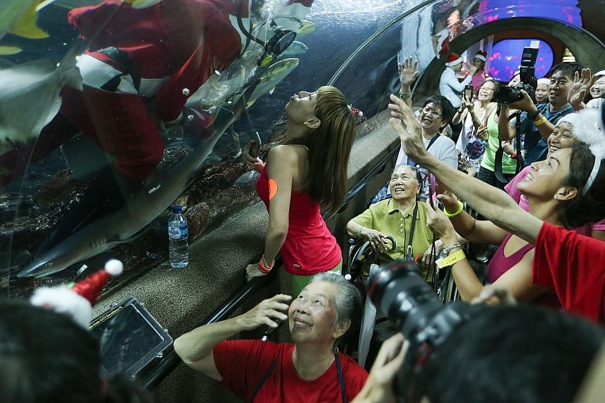 Zumba instructor Cyndi Chua, 40, mock-kissing a scuba-diving Santa Claus at Underwater World Singapore yesterday, drawing smiles from visitors from Thye Hua Kwan Seniors Activity Centre. Besides viewing the marine life and taking photos, the 30 senio