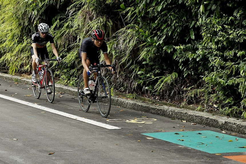 Undergraduate John Ang (left), 22, and full-time national serviceman Calvin Wong (right), 20, cycling on Sentosa's new on-road cycling lanes on Dec 21, 2015.