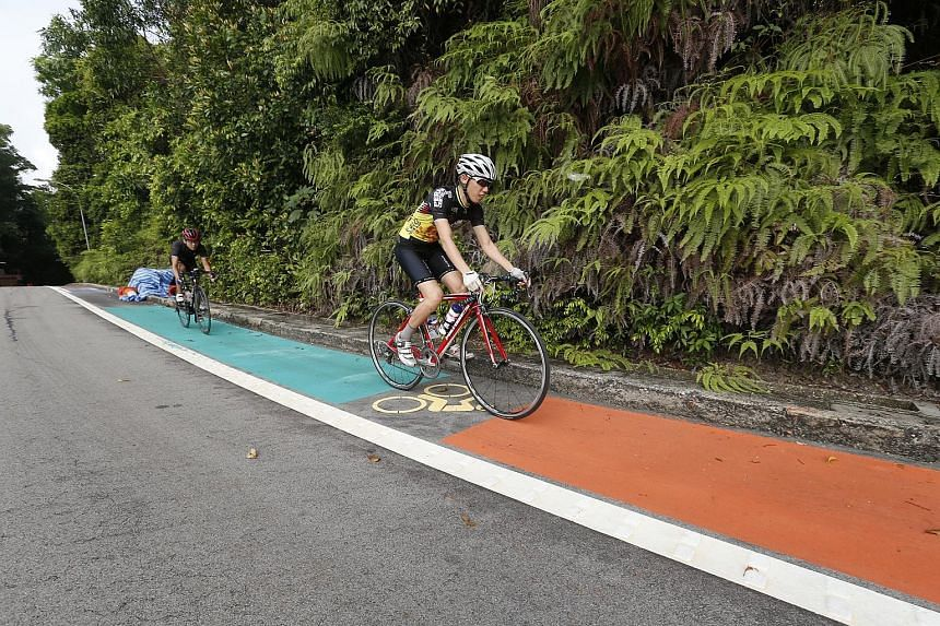 Undergraduate John Ang (right), 22, and national serviceman Calvin Wong, 20, trying out Sentosa's new on-road cycling lane yesterday.