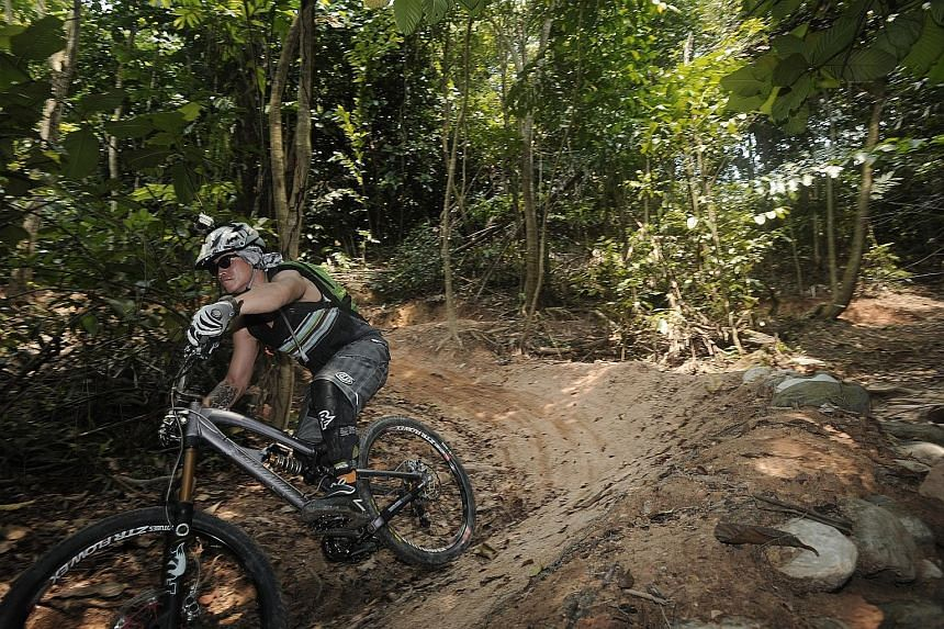 The 2km Kent Ridge Park mountain bike trail, with its narrow pathways, steep inclines capped by large rocks and tree roots, and sharp descents, is one of the more challenging trails here. Updates on investigation works and when the trail will re-open