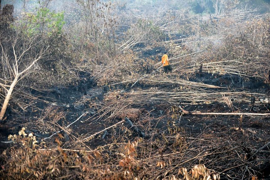 In this picture taken on Oct 30, 2015, a firefighter attempts to extinguish fires in forest and peatlands surrounding Palangkaraya city in Central Kalimantan.