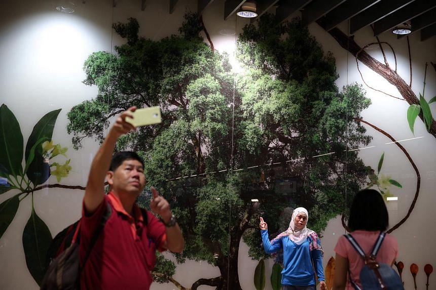 Commuters at Botanic Gardens Station take photographs against the artwork at the platform.