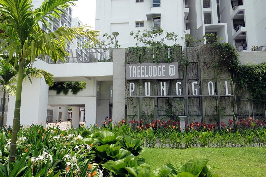 Entrance of HDB estate Treelodge @ Punggol.