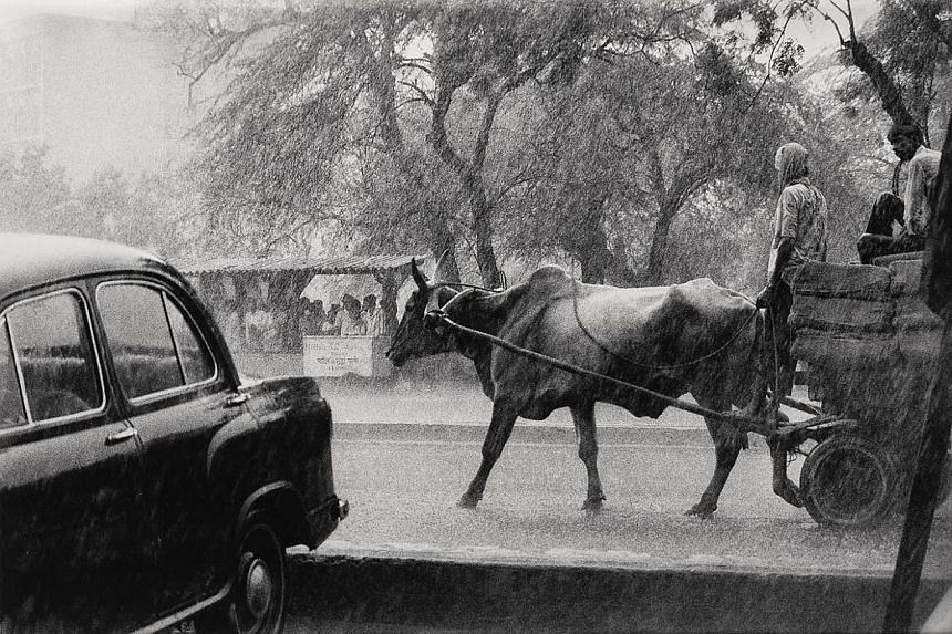 Monsoon downpour in Delhi (1984) by Raghu Rai.