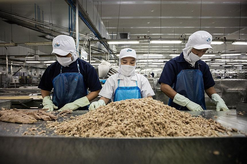 A tuna processing factory of the Thai Union Group. The world's largest canned tuna producer has been acquiring so many big-name seafood firms that it became embroiled in an anti-trust probe in the US. The company has also been the target of investiga