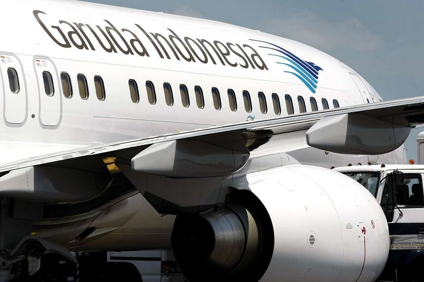 cap: A Garuda Indonesia flight was delayed after a bee got stuck in vital equipment in the aircraft, causing a problem with the plane's controls.