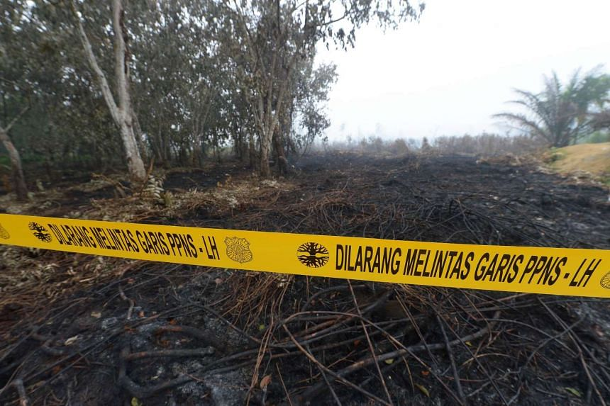 A cordon is placed near a burnt area during investigations in Rimbo Panjang, Riau province.