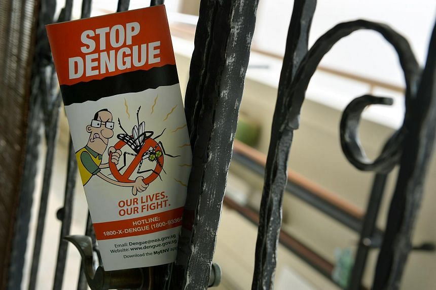 Pamphlets distributed by the National Environment Agency to inform residents about dengue.