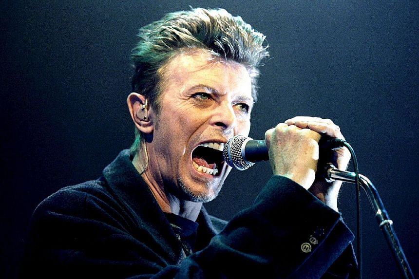 David Bowie (above) performing in Vienna in 1996.