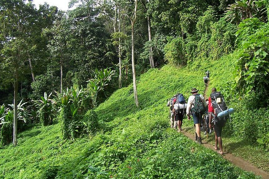 The Kokoda track in Papua New Guinea.