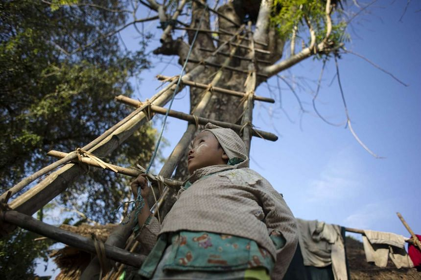 A boy holding the rope to go up a tree house with a ladder.